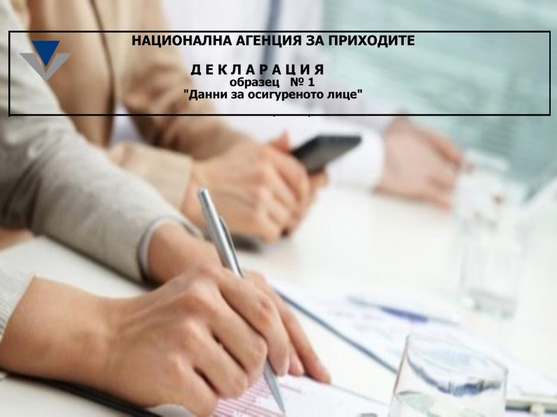 Спецификация на входните файлове за Декларация обр. № 1, валидна от 1 януари 2015 г.