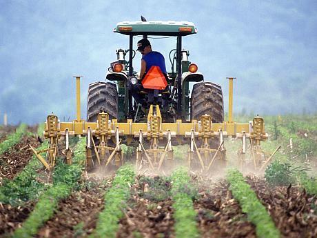 Задължителни осигурителни вноски на земеделските производители