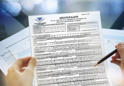 НАП публикува декларациите за данъчните облекчения за деца и за деца с увреждания