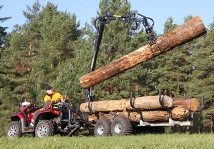 """ИА""""Главна инспекция по труда"""" и НАП се включват в контрола на дейността на дърводобивните фирми"""