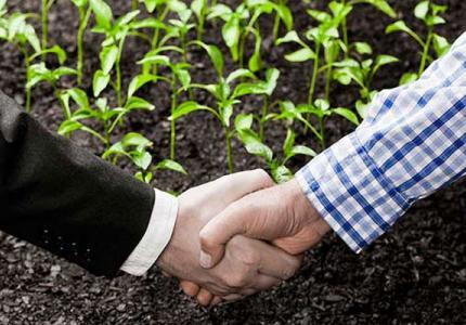 Инспекция по труда подготвя проверки за сключени трудови договори за селскостопанска работа