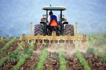 ББР с нова програма за индиректно финансиране на земеделски стопани